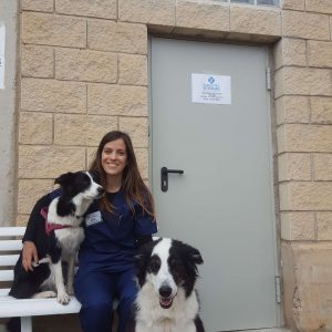 Consultorio veterinario en Huesca de Comercial Guiralsa